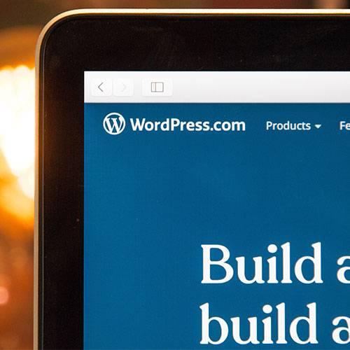 wordress-500-x-500
